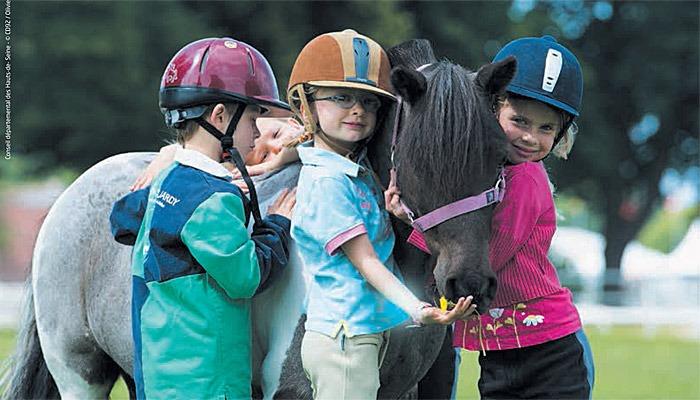 Journée du cheval Haras de Jarny