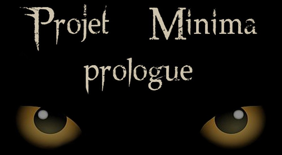 Projet Minima