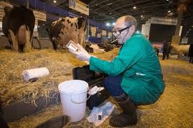 Un vétérinaire sur le salon de l'agriculture effectuant des prélévements