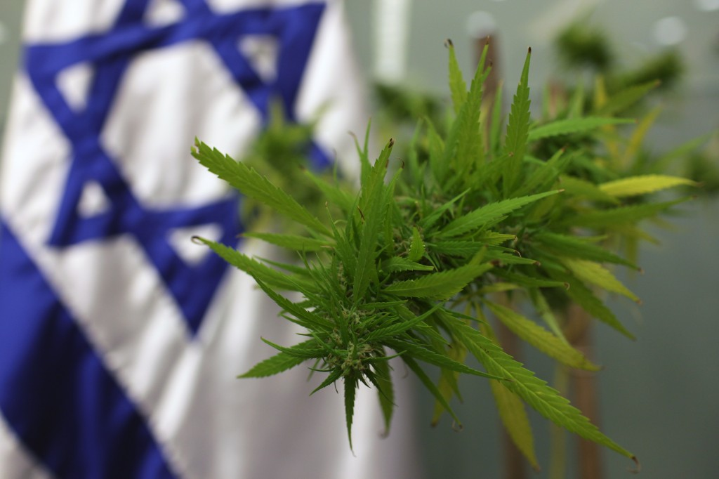 Israel Marijuana