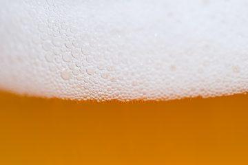 La bière serait un meilleur anti-douleur que le paracétamol