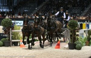 FEI World Cup Driving Bordeaux