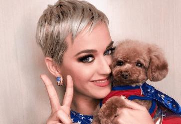 Katy Perry : la reine de Forbes