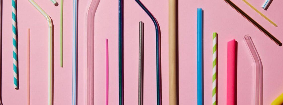 LesPailles.com alternative pailles sans plastique France