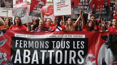 Défenseurs des animaux et des militants végans réunis le 8 juin 2019 dans les rues de Paris (afp.com/Dominique FAGET)