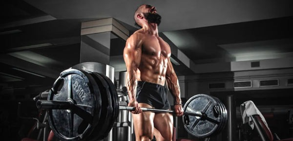 What's Wrong With musculation travailler la force